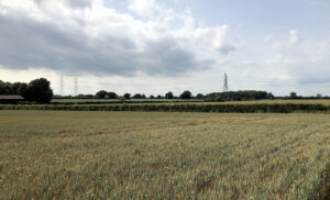 Scottish Powers proposed site for substations in Friston Suffolk.