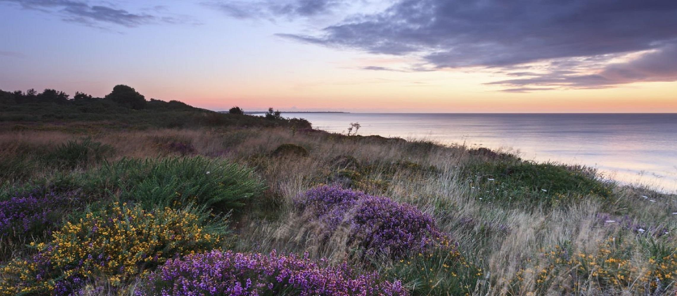 Suffolk Coast & Heaths AONB